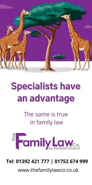 Family Law Company - Specialists have an advantage, the same is true in family law.