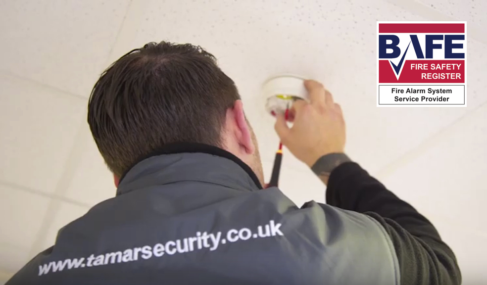 Tamar Security fire safety engineer