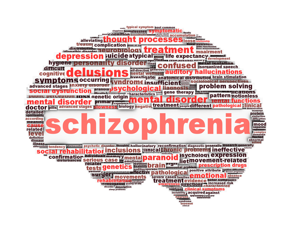 a term paper on schizophrenia
