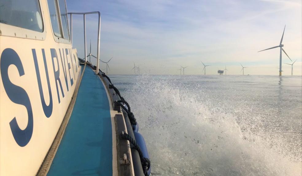 Ocean Ecology survey
