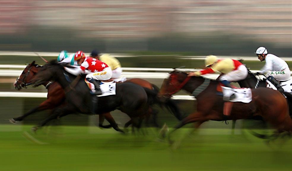 Betting horses tips celebration of gospel on bet 2010