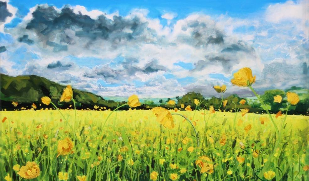 Buttercups at Ide by Joe Webster