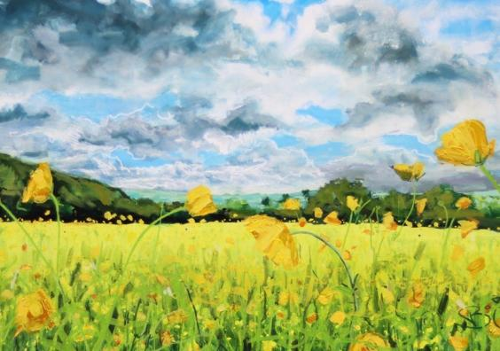 Buttercups at Ide by Joe Webster