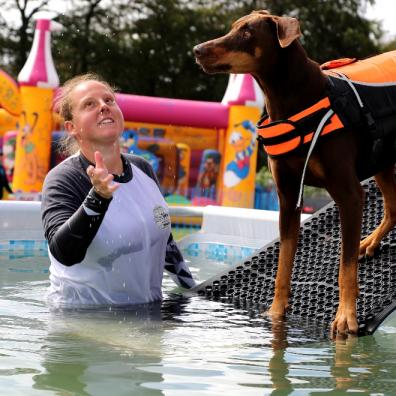 Festival for dog lovers to return this summer!